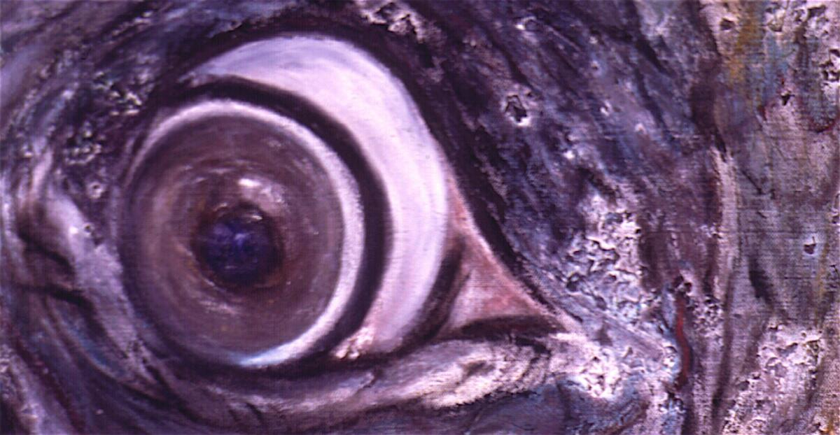 elephants-eye_2