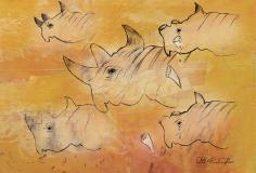 Rita-rhino-col